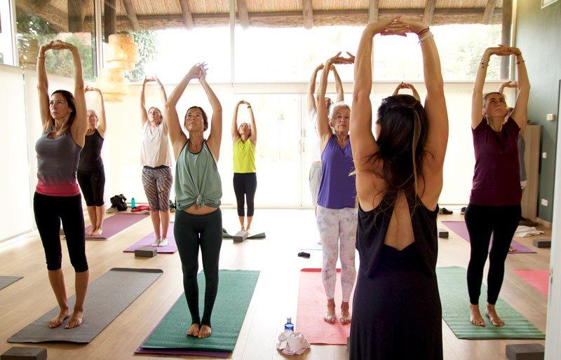 Hatha Yoga Online via Zoom